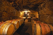 Wine cellar of Clos Rougeard, Saumur-Champigny, France