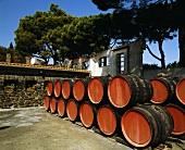 Weinfässer lagern unter freiem Himmel, Templiers, Banyuls
