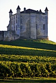 Château Féodal against vineyards, Côtes de Castillon, Bordeaux