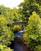 Fiddich-Riverat bei Dufftown, Heimat von sieben Whisky Destillerien