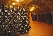 Rüttelregale im Weinkeller Ca' del Bosco, Lombardei, Italien