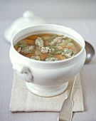 Vegetable soup with bacon dumplings in a soup tureen