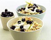 Swiss Alpine muesli (muesli with nuts, yoghurt, blueberries)
