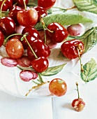 Cherries in a fruit bowl with cherry motifs
