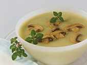Potato and courgette soup with mushrooms