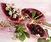 Blackberries in three bowls & blackberry sprigs with flowers