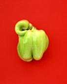 Green pepper on red background