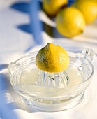 Squeezed lemon and lemon squeezer