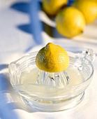 Squeezed lemon and lemon squeezer