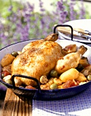 Chicken with olives (Poulet aux olives)
