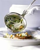 Zuppa di finocchio (fennel soup), Sardinia, Italy