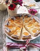 Apricot quark tart