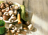 White and brown mushrooms