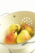 Frisch gewaschene Birnen in einem Sieb