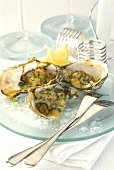 Oysters au gratin with garlic and herbs