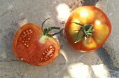 St. Pierre (or Saint Peter) tomato