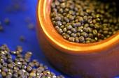 Black lentils (black gram; kali dal)