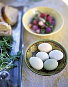 Still life with eggs in dish, radishes behind