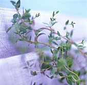 Sprig of thyme on linen cloth