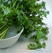 Bunch of parsley in a white dish