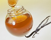 Glas mit Bienenhonig und Vanilleschoten