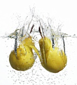 Two pears falling into water