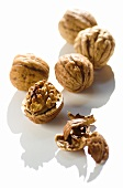 Five walnuts, opened and unopened, on white background