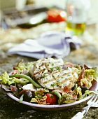 Barbecued white tuna cutlet (thon blanc) on salad