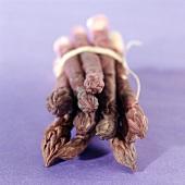 Ein Bund violetter Spargel, liegend