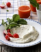 Radishes with quark cheese spread