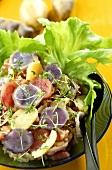 Colourful potato salad with different coloured potato varieties