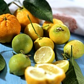 Still life with limes and bergamot oranges