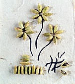 Cardamom capsules on paper, some arranged in flower shape