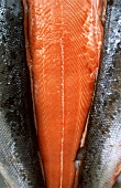 Freshly filleted wild Irish salmon