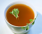 Aromatic poultry stock with marjoram