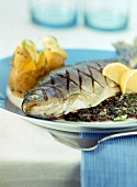 Barbecued trout with herb stuffing