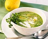 Lauch-Zitronen-Suppe mit Majoran (schmeckt heiss oder kalt)