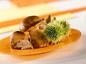 Autumn plate of ceps and chestnuts