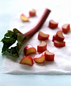 Rhubarb on granulated sugar