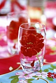 Glass with flower design on coloured tablecloth