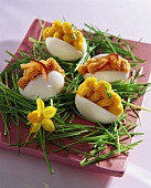 Eggs filled with salmon cream and garnished with chives