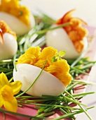 Eggs stuffed with salmon cream and garnished with chives