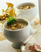 Creamed chanterelle soup with croutons