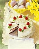 Strawberry tiramisu gateau, white chocolate curls for Easter