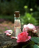A bottle of rose vinegar and roses