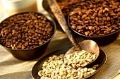 Coffee beans: unroasted, Malabar & Mokka Harrar varieties