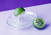 A lemon squeezer with lime