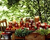Various tomato preserves on garden table