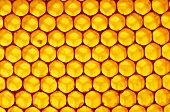 Honeycomb (filling the picture)