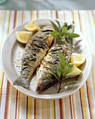 Platter of barbecued sea bass with bay leaves
